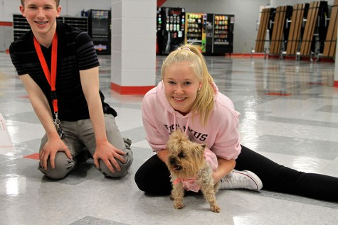 Student council holds annual Dog Fest