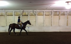 Students and faculty show passion for horse riding
