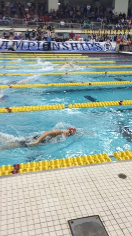 Girls swim impresses at State A Finals, racks up fifth straight top ten performance
