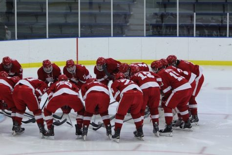 Boys' hockey takes third in state
