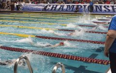 Girls' swim places 15th at State, wins podium spot in 200 Free Relay