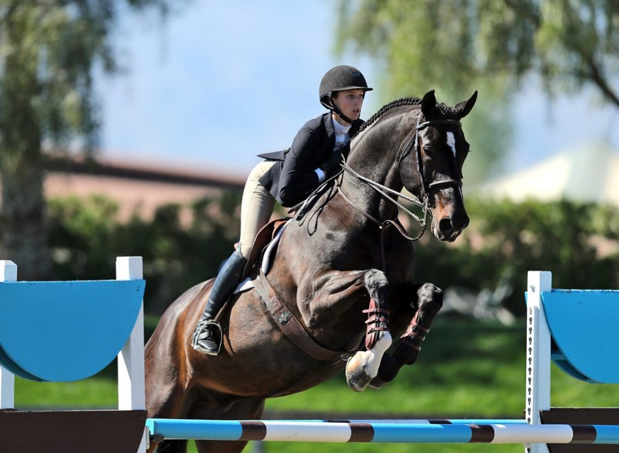 Junker+has+been+horseback+riding+since+a+young+age%2C+and+has+qualified+for+national+competitions.+She+hopes+to+continue+pursuing+her+passion+after+graduating+from+BSM.