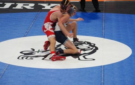 Senior wrestler competes in State Tournament