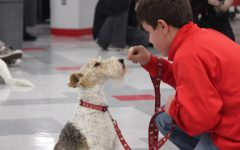 BSM holds annual Dog Fest