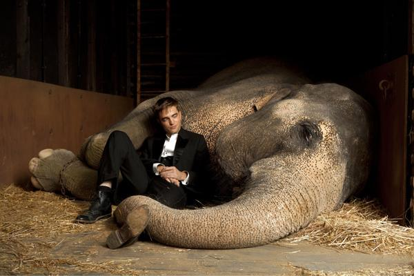Water for Elephants a brilliant adaptation