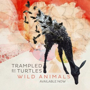 Trampled by Turtles' seventh studio album contains unique sound that sets them apart from other bluegrass bands.