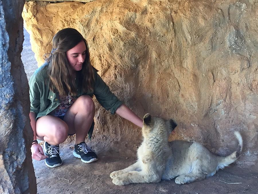 Sophomore Michelle Wyley got an up-close encounter with a lion club over her summer vacation.