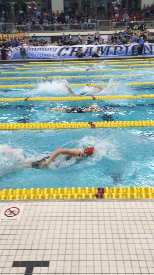 Grace Hedin is seen swimming here in the 400 yard Freestyle Relay, where team would end up getting 6th.