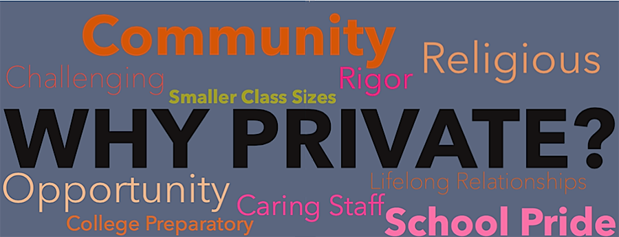 The pros and cons of private school education