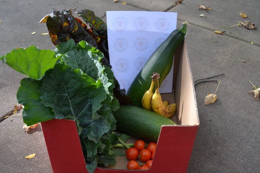 BusyBee delivers boxes of fresh produce to neighborhoods in North Minneapolis.  The organization was founded by Peri Warren ('15) in collaboration with seniors Mark Racchini and McKenzie Dunleavy.