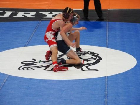 Wrestling places 9th at Section 5AA Individual Meet, sends senior to State
