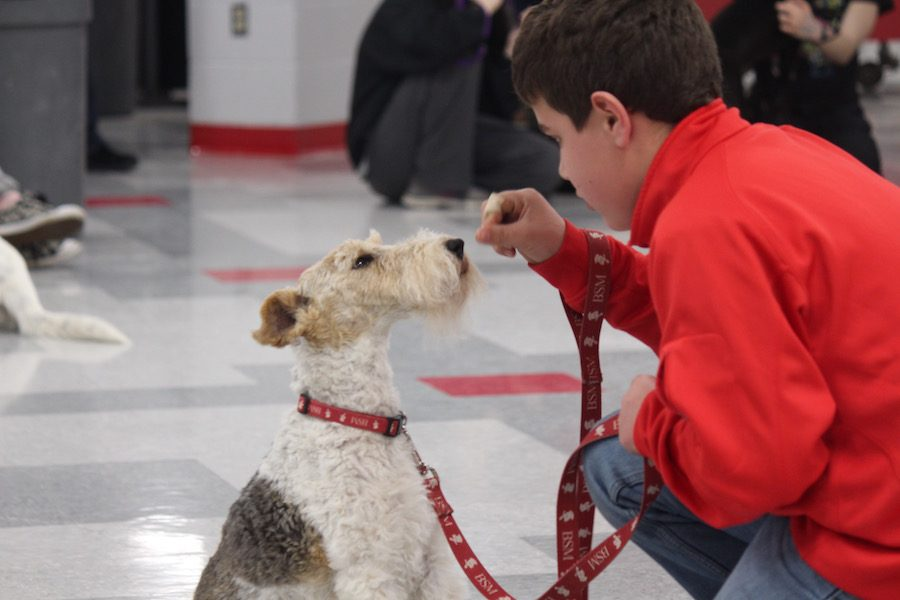 The student council hosted its annual Dog Fest, in which students brought their dogs to perform tricks.