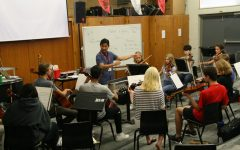 BSM now offers orchestra as a class held during the school day