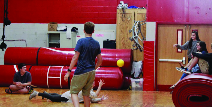 Wellness can include many activities such as dodgeball.