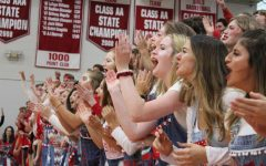 Seniors cheer during the 2017 Homecoming Pepfest.