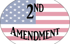 Second Amendment: Protect or Repeal?