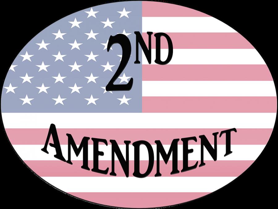 Second Amendment: Protect or Repeal?