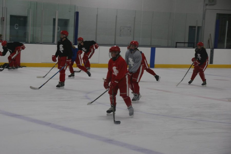 Girls%27+hockey+hopes+for+a+strong+season.