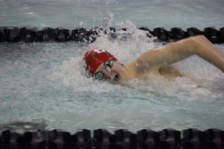 Junior+Matt+McGonigle+swims+the+500+freestyle+at+Sections.