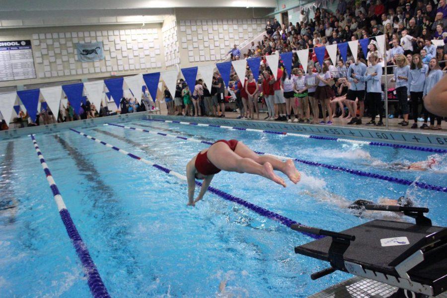 Sophomore Bridget Baker dives off the starting block.