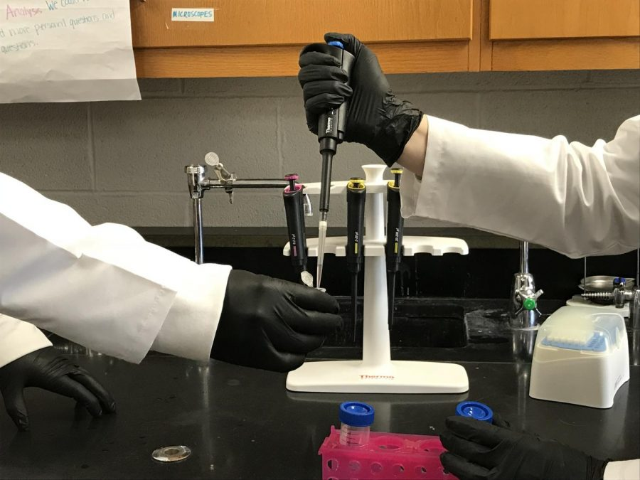 Biomed classes combine science with medicine to  uniquely teach students about an important field.