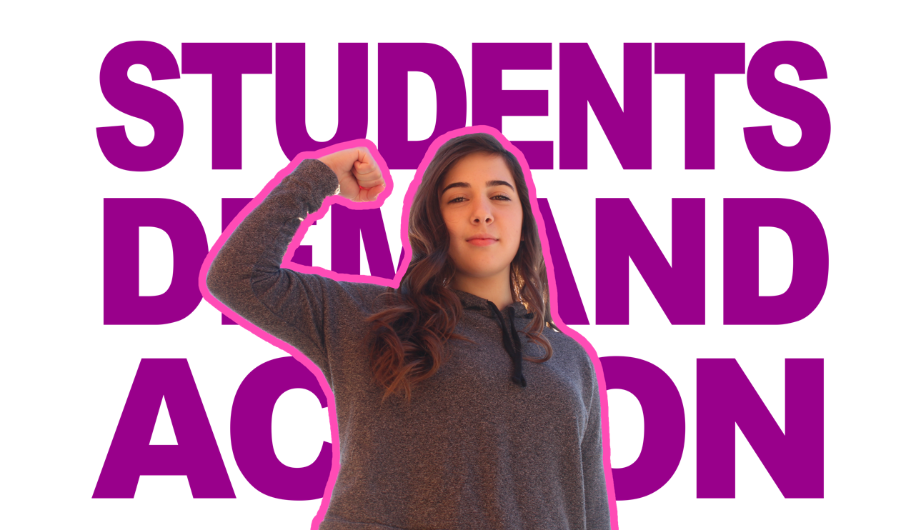 In the wake of the school shooting in Parkland, Florida, senior Sophie Herrmann has dedicated herself to speaking out about the need for gun control and common sense gun laws.