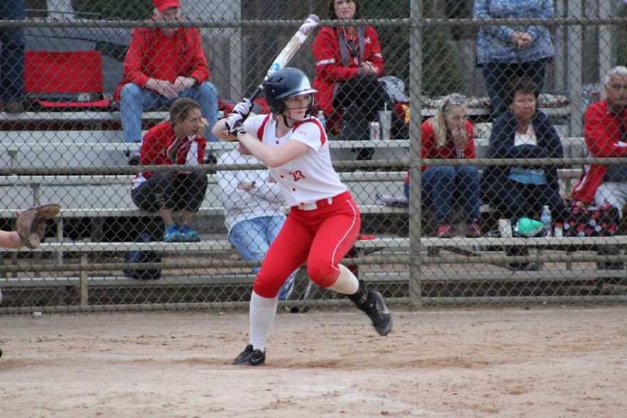 Softball heads into section tournament with momentum