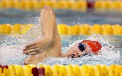 Taylor Williams nominated for Academic All-American USA Swimming