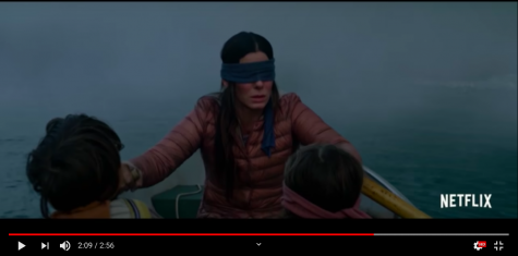 """Bird Box"" bewilders its millions of viewers"
