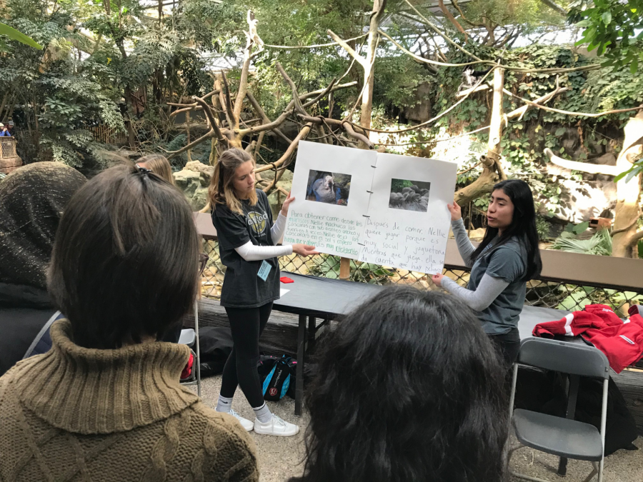 Each+student+created+a+project+on+a+specific+animal+and+shared+them+at+the+Minnesota+Zoo.+