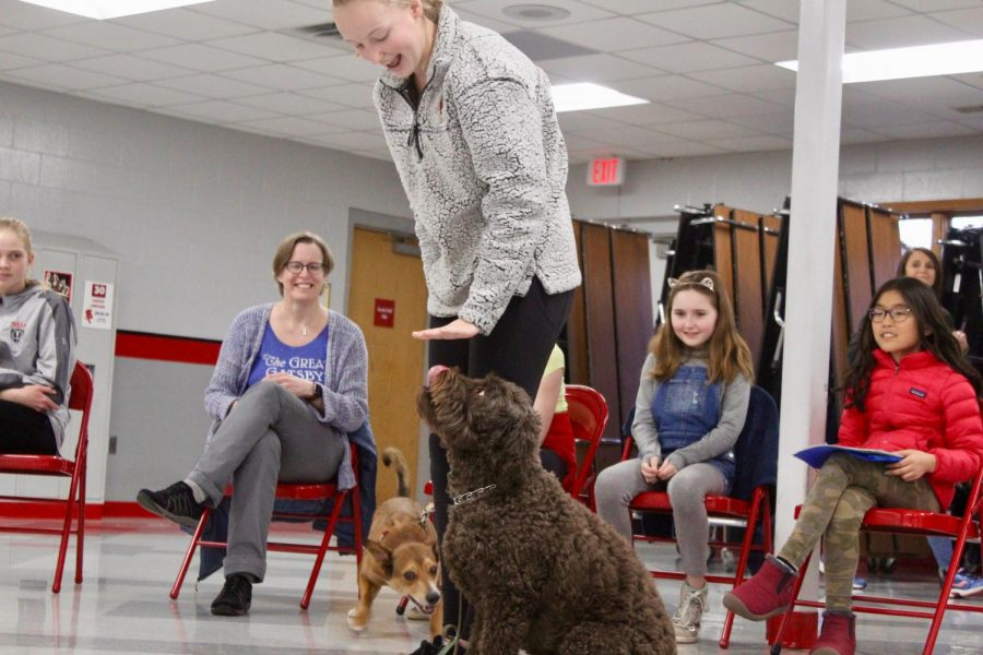 Cammie Norman helped her dog to perform a perfect sit while other owners and dogs watched.