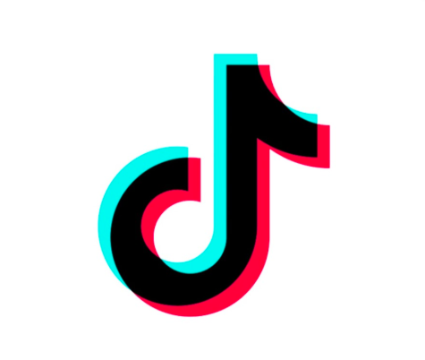 TikTok may be popular now, but it will never replace Vine in the hearts of Vine lovers.