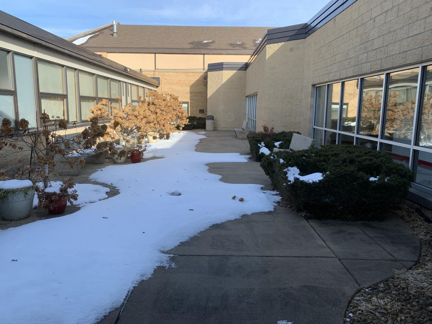 Despite the snow, the courtyard with its bushes and benches teases students who have never been allowed inside.