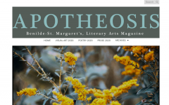 Apotheosis magazine handles setbacks this year