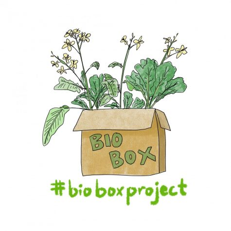Biology Teacher Mark Peterson created the Bio Box Project so that his students could complete biology labs while doing online school.