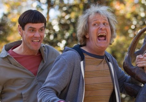 Dumb and Dumber is a must-watch on Dokman