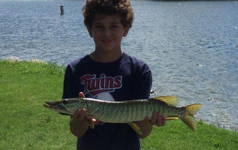 Tiger muskie caught in Bryant Lake.