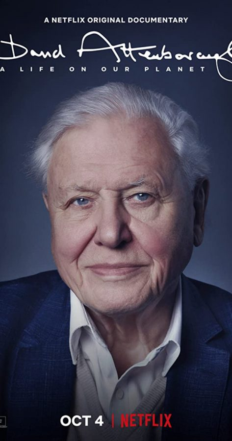 David+Attenborough%27s+A+Life+On+Our+Planet+is+a+moving%2C+first-hand+account+of+humans%27+impact+on+wildlife+and+the+world+today.