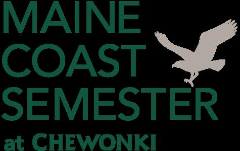 Maine Coast Semester