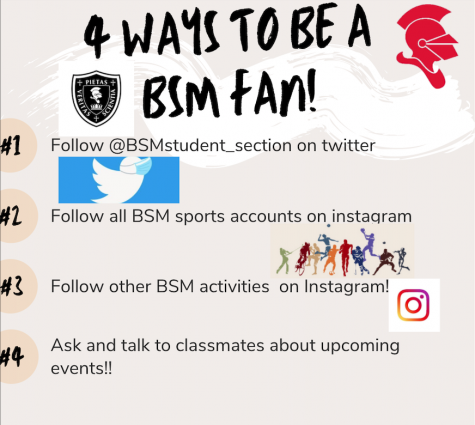 How to be a BSM fan in 2020