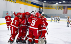 The BSM girls' hockey team celebrates after beating Breck last season.