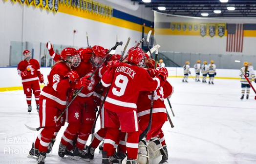 The+BSM+girls%27+hockey+team+celebrates+after+beating+Breck+last+season.